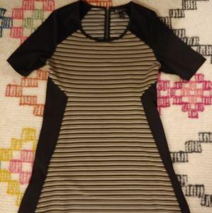 Lane Bryant Black/Tan Dress sz 14/16
